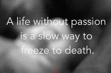 Best Love Quotes A Life Without Passion Is A Slow Way To Freeze To