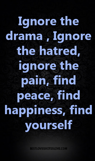 Best Love Quotes Ignore The Drama Ignore The Hatred Ignore The